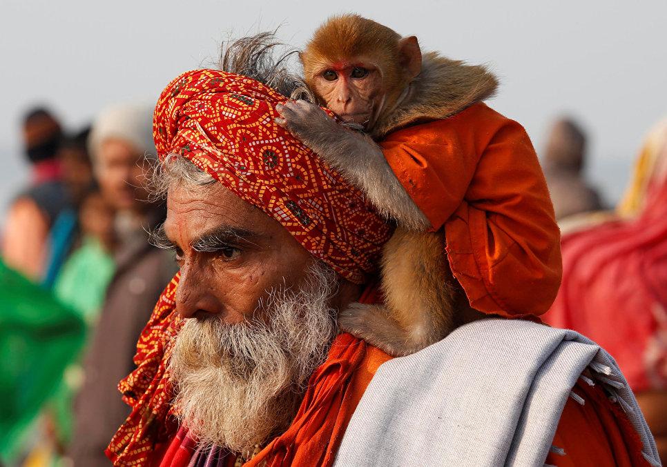 Садху гуляет со своей обезьяной во время фестиваля Макара-санкранти на острове Сагар, Индия