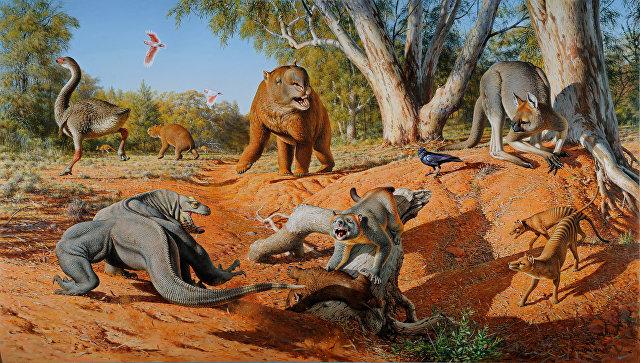 Ученые: ввымирании огромных животных виноваты аборигены