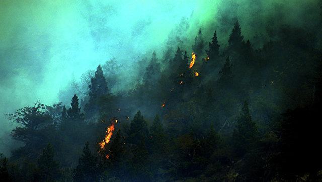 ВЧили сообщили, что удалось взять под контроль большинство лесных пожаров