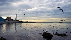Акватория порта в Севастополе. Архивное фото