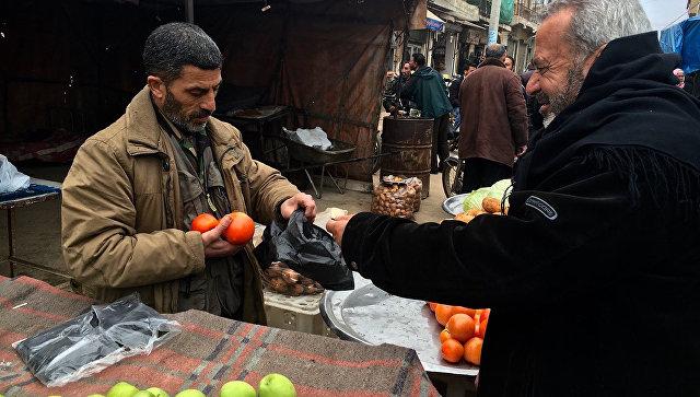 Сирия будет поставлять в Российскую Федерацию фрукты иовощи