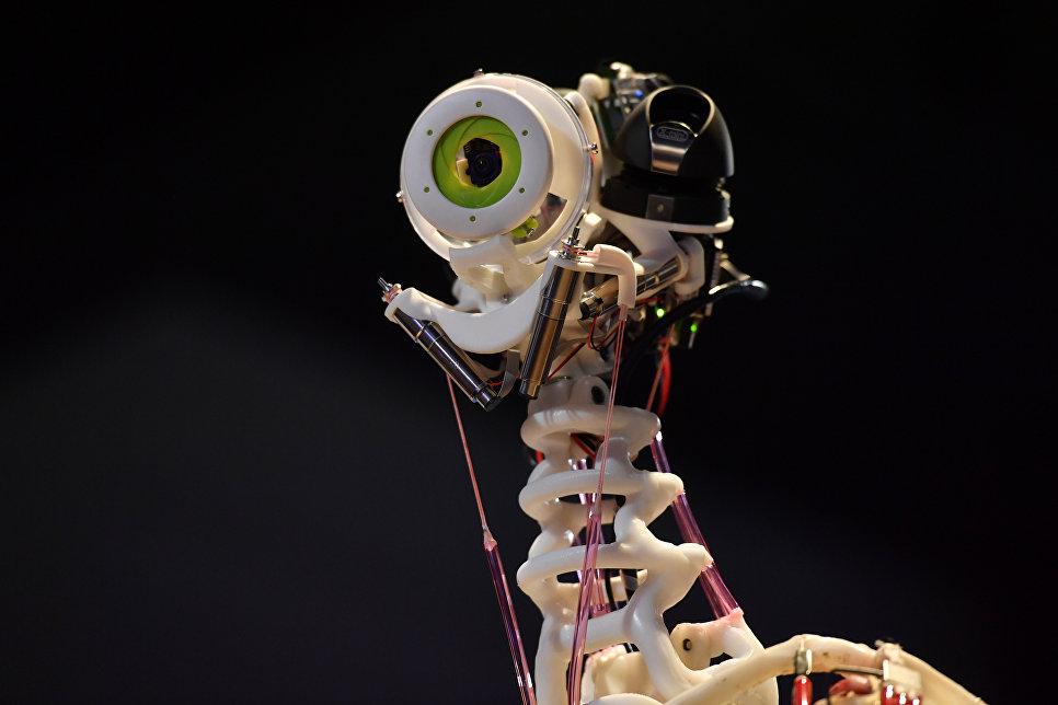 Выставка роботов в Музее науки в Лондоне