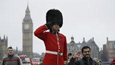 Королевский гвардеец стоит напротив Парламента Великобритании. 8 февраля 2017 года