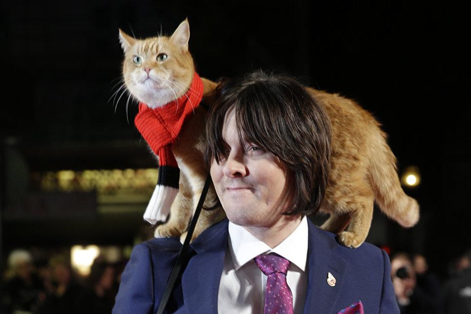 Писатель Джеймс Боуэн и кот Боб