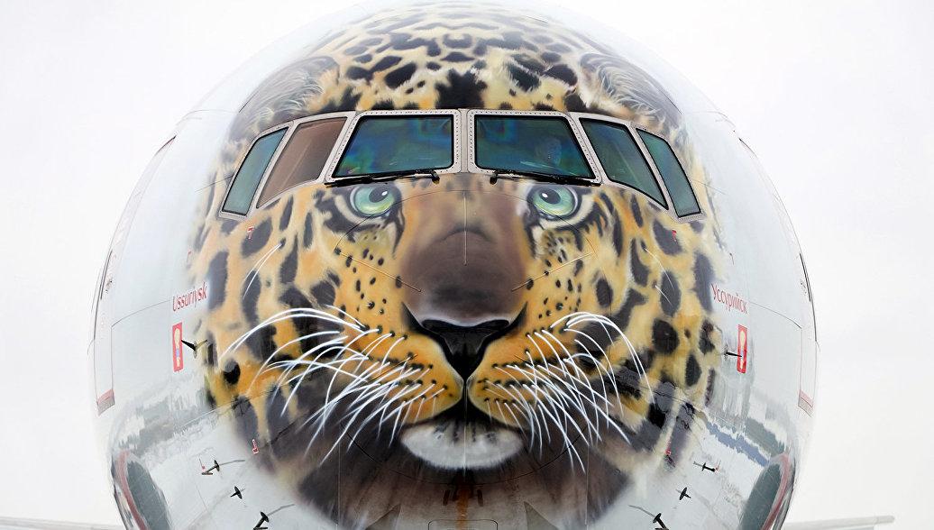 Авиакомпании «Россия» выпустила врейс «леопардовый» Boeing