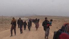Семьи с детьми пешком выбирались из Мосула, чтобы сесть на автобусы в Эрбиль