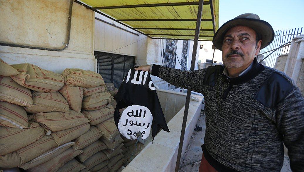 Коалиция во главе с США оценила потери террористов ИГ в Сирии и Ираке
