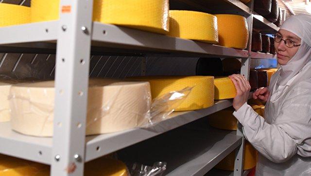 ВДмитровском районе Подмосковья планируют сделать сырный кластер