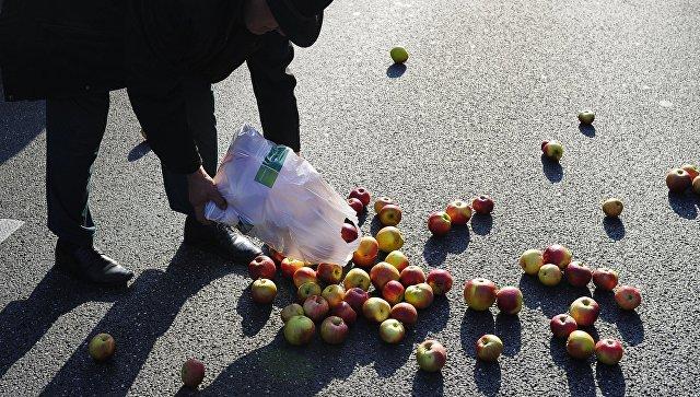 Британский учёный позволил есть упавшую напол пищу
