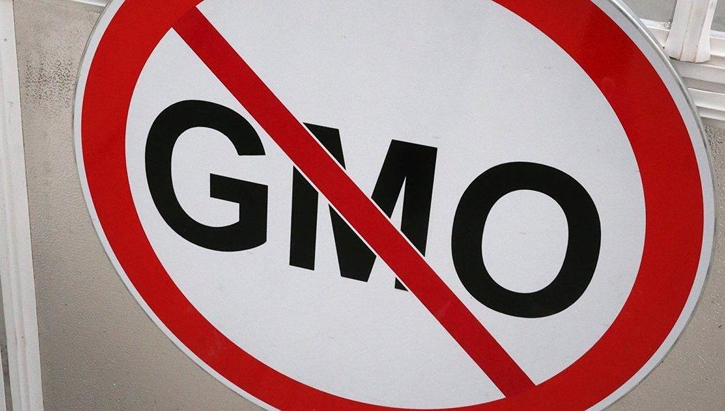 Дворкович: Россия не будет производить продукты с ГМО