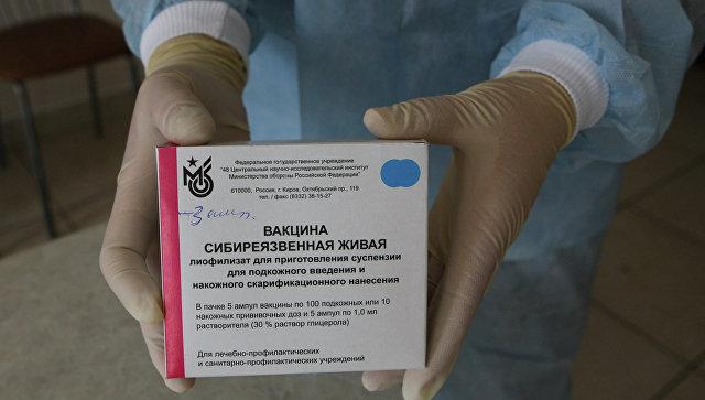 Неменее 3,7 тыс. человек наЯмале привили отсибирской язвы эксклюзив