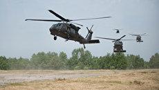 Вертолеты Black Hawk во время учений НАТО. Архивное фото