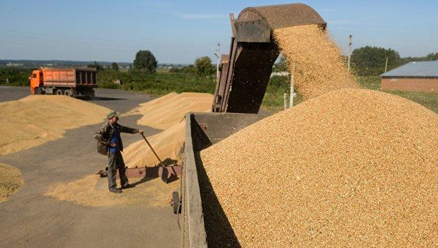 Россия и Китай планируют подписать документы для поставок зерна в КНР