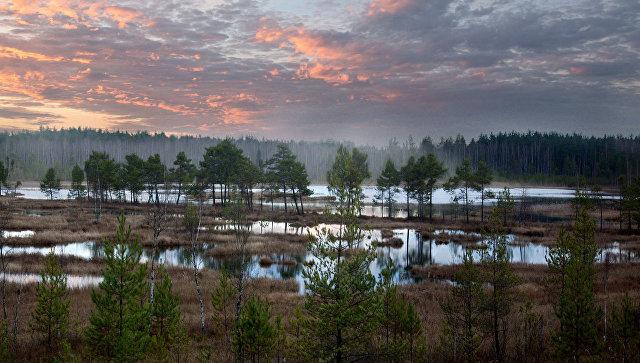 Закат над Галкинским болотом