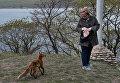 Женщина кормит лисицу рыбой. На территории Приморского океанариума на острове Русском поселилась большая лисья семья