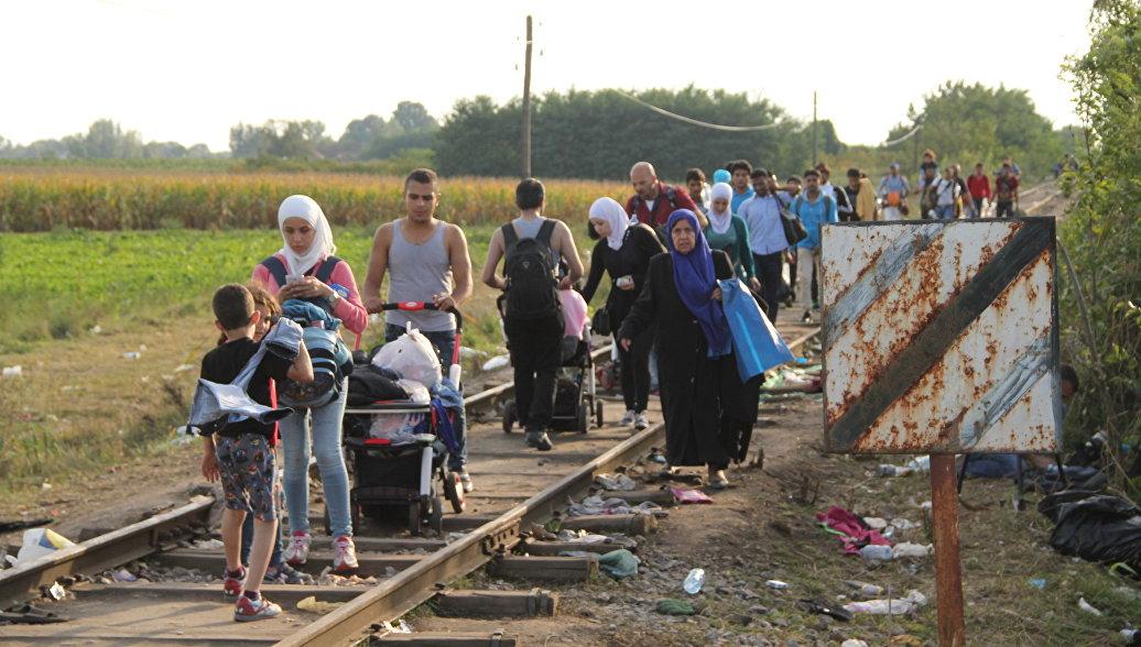 Чиновник: сокращение пособий мигрантам не решит проблему их наплыва