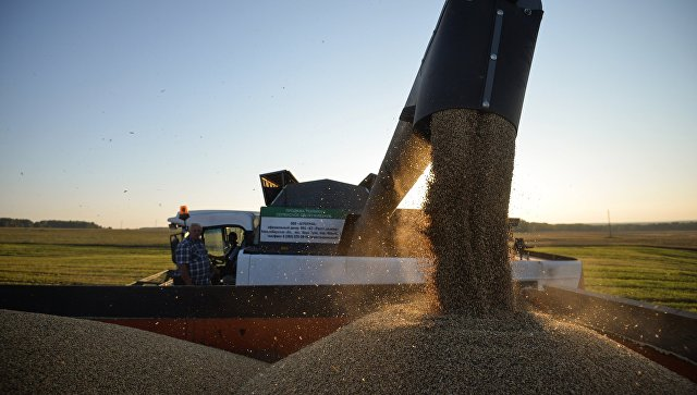 Bloomberg предсказал РФ потерю мирового лидерства вобласти экспорта пшеницы