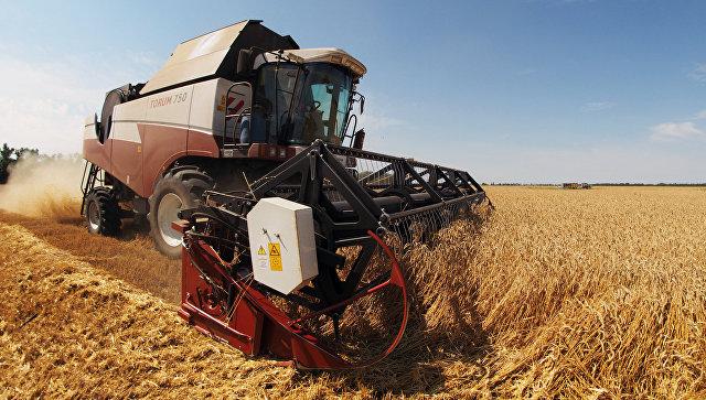 Недостаток продовольствия вусловиях санкций ликвидирован— СовбезРФ