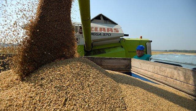 Российская Федерация подписала 1-ый договор напоставку пшеницы вВенесуэлу
