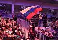 Зрители во время финального этапа гранд-финала по World of Tanks в комплексе ВТБ Ледовый дворец в Москве