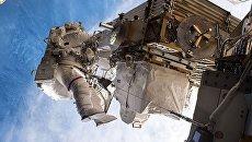 Астронавт НАСА. Архивное фото