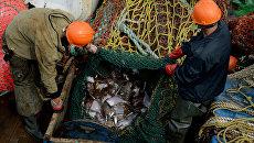 Рыболовный сейнер. Архивное фото