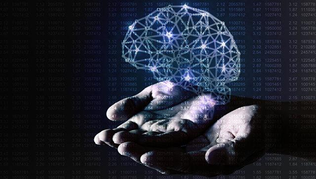 人类的大脑。 档案照片