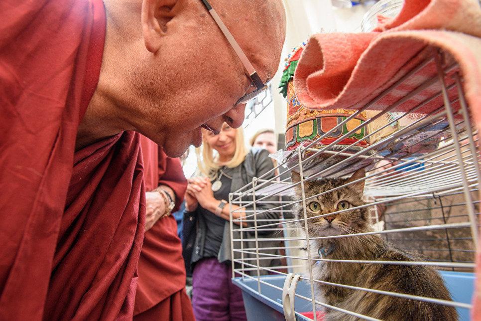 Будийский ритуал благословения домашних питомцев москвичей