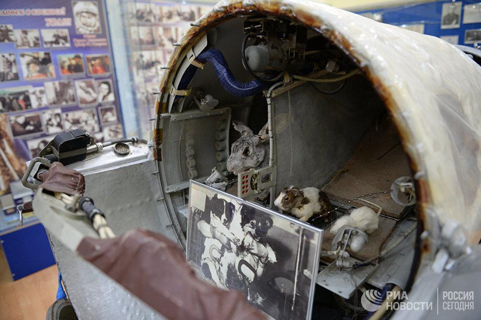 Биоспутник Космос-110, в котором летали последние советские собаки-космонавты Ветерок и Уголёк, в музее истории космодрома Байконур.