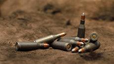Оружейные патроны. Архивное фото