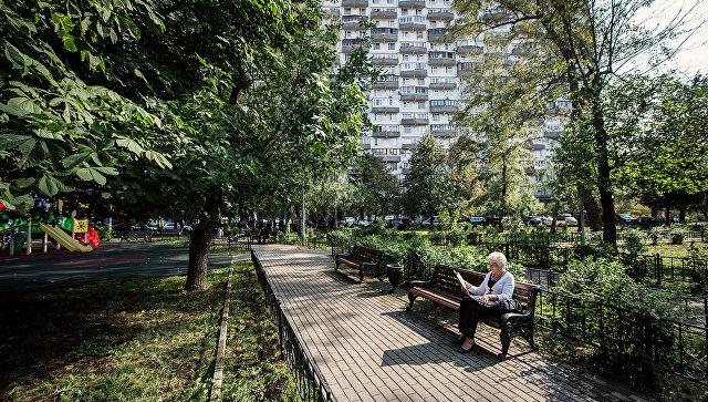 Горожане выбрали деревья икустарники для озеленения дворов