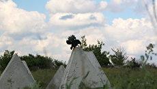Позиции близ линии соприкосновения в Донбассе