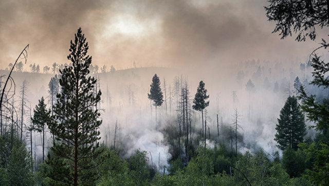 Площадь пожаров вБурятии увеличилась до2,2 тыс. гектаров
