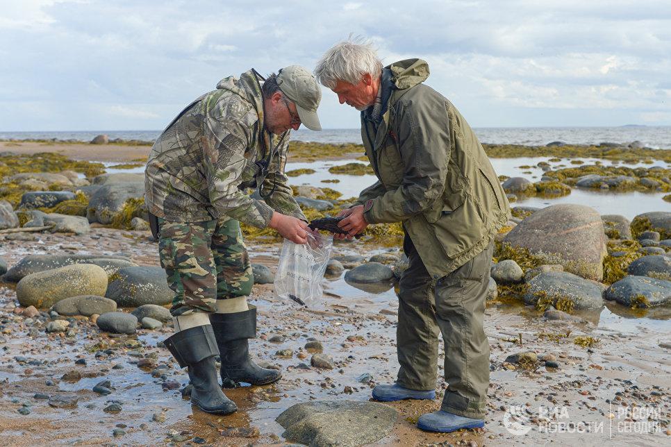 Начальник экспедиции и научный сотрудник во время сбора выбросов мазутно-песчаного агрегата, образовавшегося вследствие разлива топлива в Онежском заливе