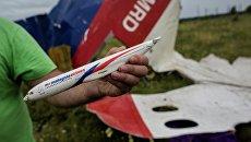 Поисковые работы на месте крушения малайзийского лайнера Boeing 777 в Донецкой области. Архивное фото