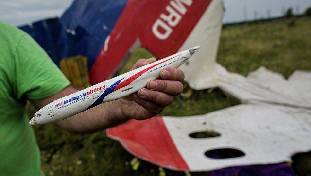 Поисковые работы на месте крушения лайнера Boeing 777. Архивное фото