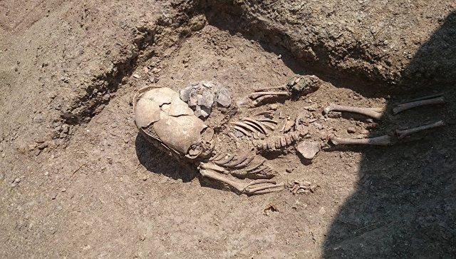 Найденное при раскопках некрополя Кыз-Аул захоронение младенца с деформированным черепом II века н.э. 26 июля 2017