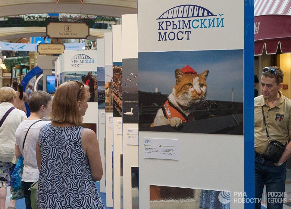 Выставка, посвященная строящемуся мосту через Керченский пролив, открылась в ГУМе. 27 июля 2017