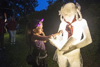 На фестивале светового искусства Ночь света в Гатчине. Парк сновидений на территории парка Гатчинского музея-заповедника