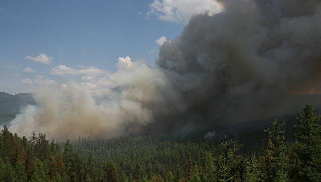 Армения направила на тушение пожара в Грузии пожарные и спасательные машины