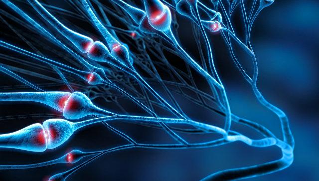 Переливание крови вполне может стать предпосылкой развития болезни Альцгеймера