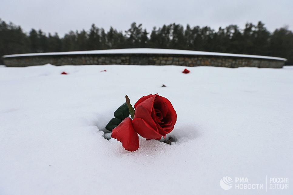 Красная роза у мемориала Курган на месте лагеря смерти