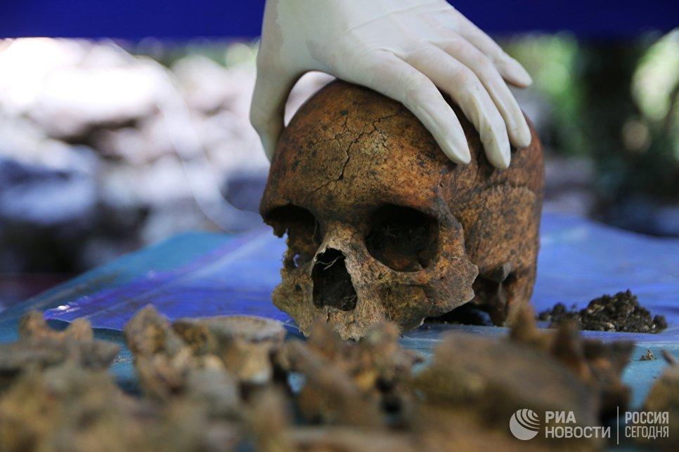 Обработка материалов, найденных в ходе раскопок в Крыму. Архивное фото