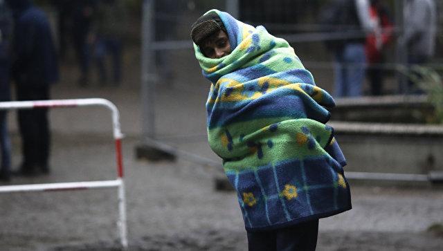 Глава МВД: Часть беженцев, которые прибыли в Германию, были террористами