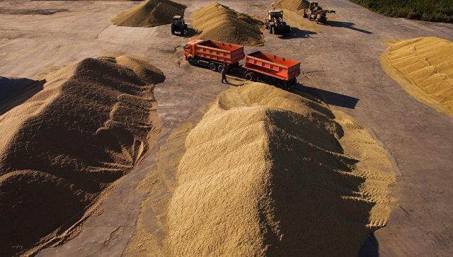 ВЧебоксарском районе осталось убрать 1568 газерновых
