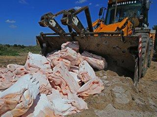Уничтожение санкционных продуктов в Калининграде. Архивное фото