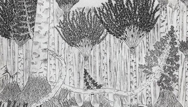 Лес Девонского периода глазами художника