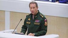 Главнокомандующий войсками национальной гвардии РФ Виктор Золотов выступает на заседании Совета Федерации РФ. 25 октября 2017