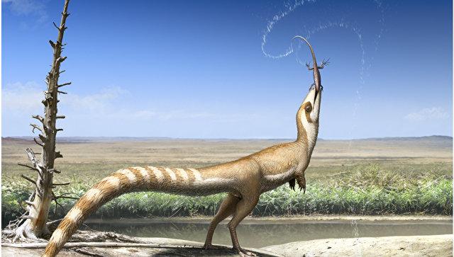 Динозавр синозавроптерикс, имевший необычную маскировочную окраску