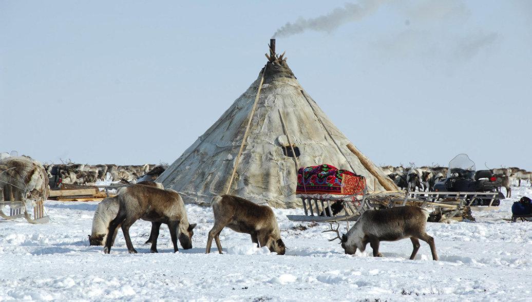 Ямало-Ненецкий автономный округ. Архивное фото